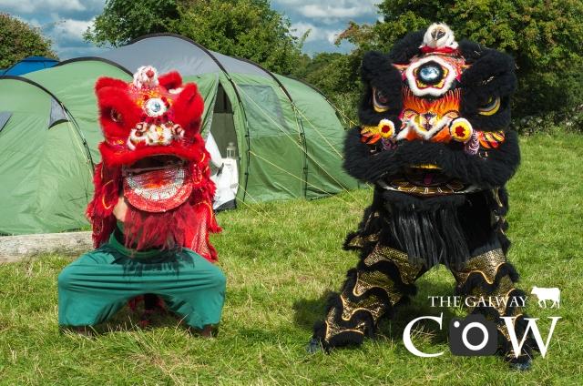 Chinese Lion Costumes Tara Energy Festival