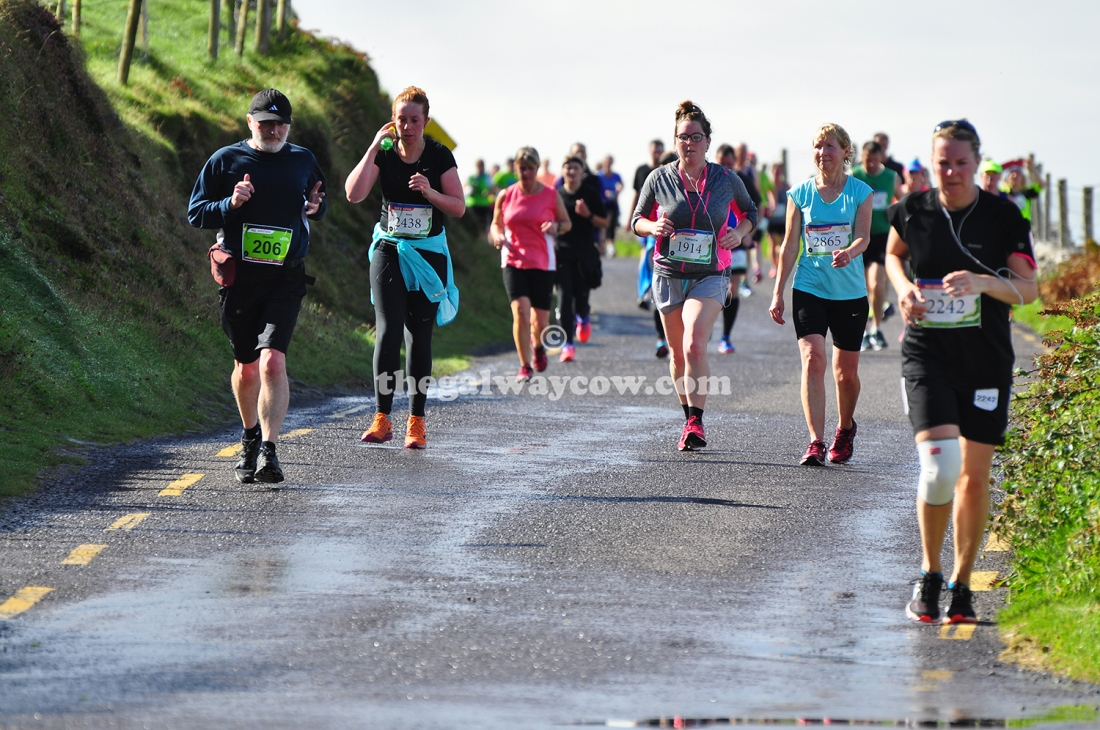 Pack of Runners - Dingle Marathon 2016.JPG