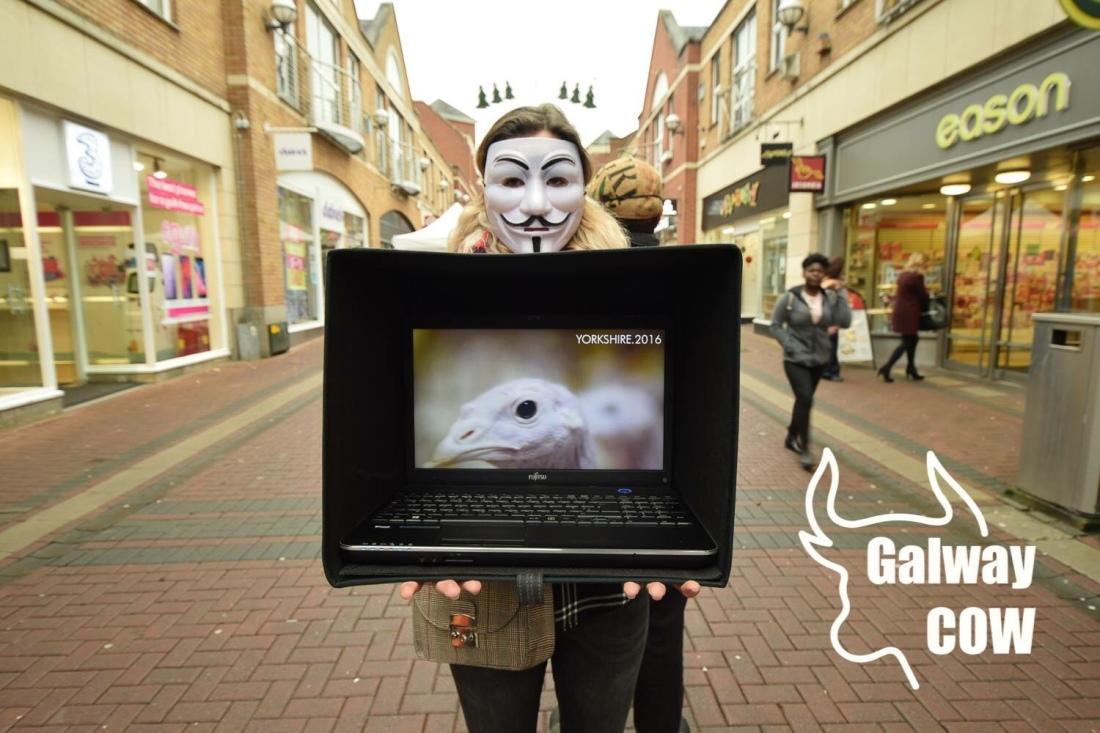 Masked Vegan Protester, Cruises Street, Limerick